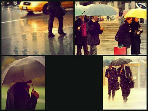 Comp pioggia1
