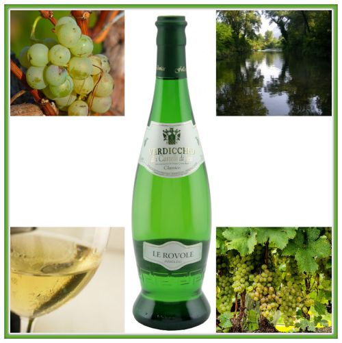 Comp. vino verdicchio